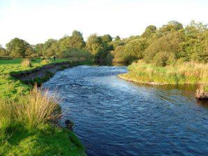 River Teify